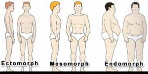 ectomorph, mesomorph, endomorph